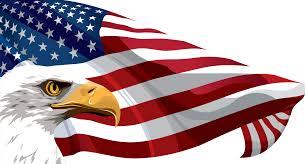 US Flag Eagle