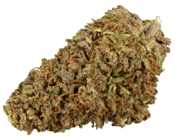 Sour Space Candy Strain