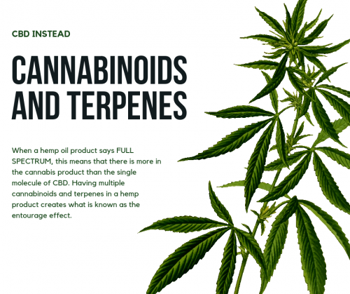 cannabinoids and terpenes, the entourage effect